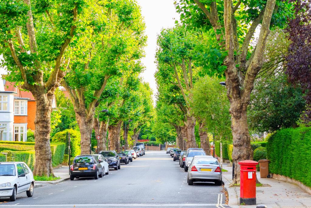 Vue sur rue bordée d'arbres à West Hampstead de Londres